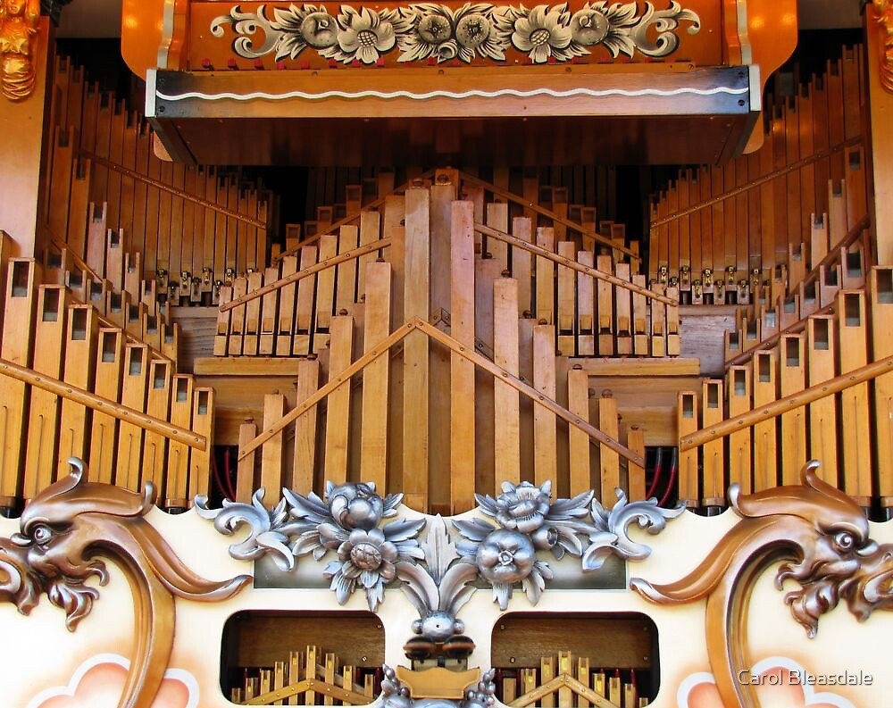 Detail of Street Organ by Carol Bleasdale