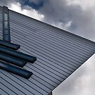 Royal Ontario Museum, Toronto by alopezc72