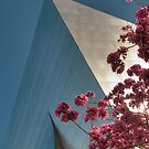 A Gehry Spring by Kevin Bergen