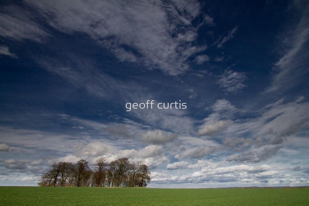Thieves Wood by geoff curtis