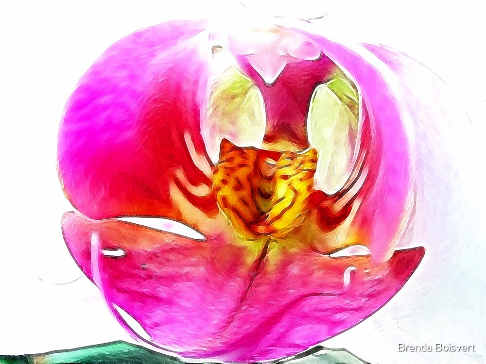 ~ Whimsy Orchid ~ by Brenda Boisvert