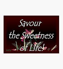 Savour the Sweetness of Life! Photographic Print