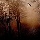 Lone Bird Flying Thither by Mike  Waldron