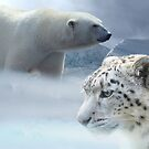 Climate Change Is Real, Leopard and Polar Bear by mia-scott