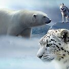 Climate Change Is Real, Save the Leopard & Polar Bear by mia-scott