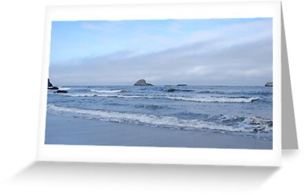Pacific Coast, Trinidad State Beach by Mary Ellen Tuite Photography
