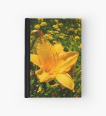 Playful Lilly Hardcover Journal