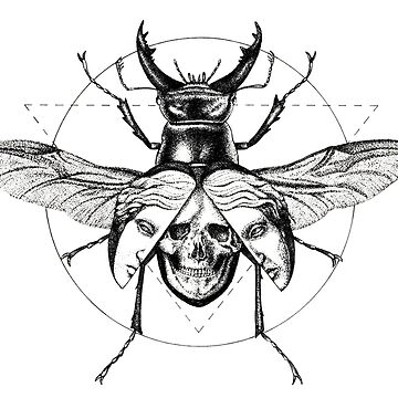 Beetle, wings, face, skull by metropol