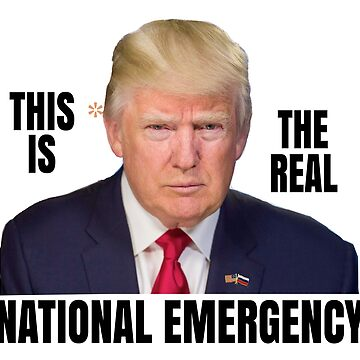 This Orange * is the Real National Emergency by DomPlatypus