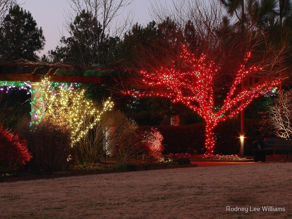 Illumination at Dusk by Rodney Lee Williams