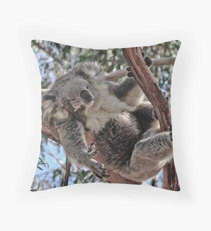 Koala at Phillip Island Victoria Throw Pillow