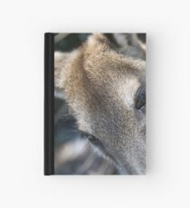 Kangaroo Closeup Hardcover Journal