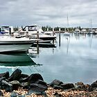 Forster Marina 481 by kevin Chippindall