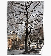 Tree in Union Square Poster