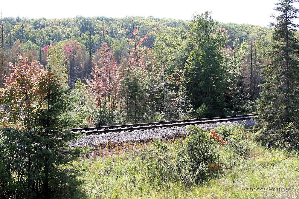 Scenic Rail Road by Rabecca Primeau