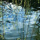 The River by Sam Mortimer
