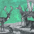 ANIMALS deer in the forest, vintage by Mauswohn