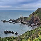 Hartland Point Devon by Avril Harris
