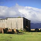 Hayshed on the Hill # 2 by Tim Wootton