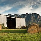 Hayshed on the Hill # 3 by Tim Wootton