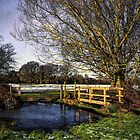 The Brook at Tidmarsh  by IanWL