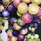 Grapes by Dorothy Perez