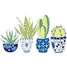 Chinoiserie Cactus Garden by LIMEZINNIASDES