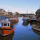 Cornwall: Mevagissey Harbour by Rob Parsons