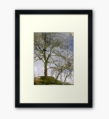 tarn's tree Framed Print