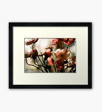 poppies awakening Framed Print