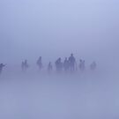 Lost in the mist by LAURANCE RICHARDSON