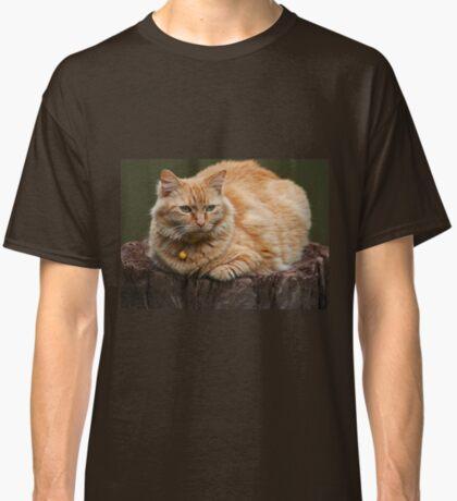 Nur besuchen! Classic T-Shirt