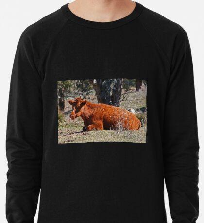 Ruhe Leichtes Sweatshirt