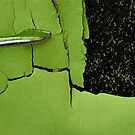 Retro 70s lime green...... by Lynne Prestebak