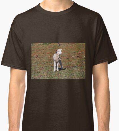 Kleines Lamm verloren Classic T-Shirt