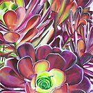 Succulent 1 by lukekellyart