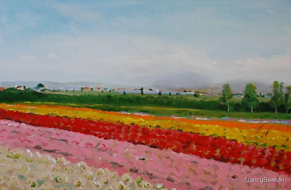 Farm Tomita by NancyBenton