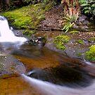 Liffey River, Tasmania by CezB