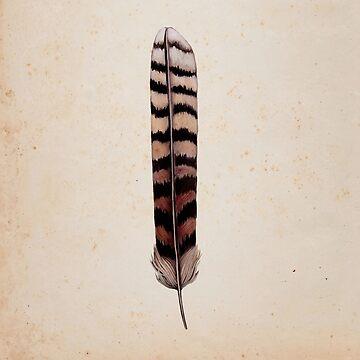 Kookaburra Feather by DanJohnDesign