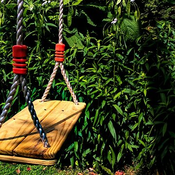 The Swing by MarylouBadeaux