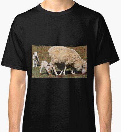 Mittagessenszeit Classic T-Shirt
