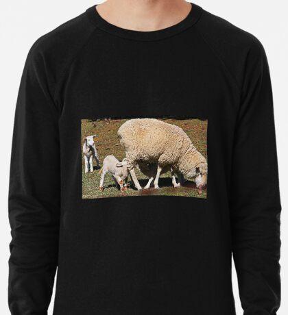 Mittagessenszeit Leichtes Sweatshirt