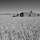 Derelict Farmhouse by Mark  Brady