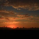 Early morning Sunrise by Angela King-Jones