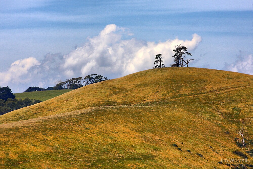 On Golden Hill - South Gippsland by Jim Worrall