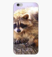 Bandit iPhone Case