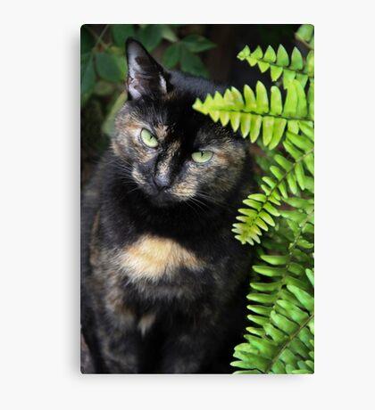 Missy, Behind the Fern Canvas Print