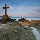 Llanddwyn Island  by Krzysztof Nowakowski