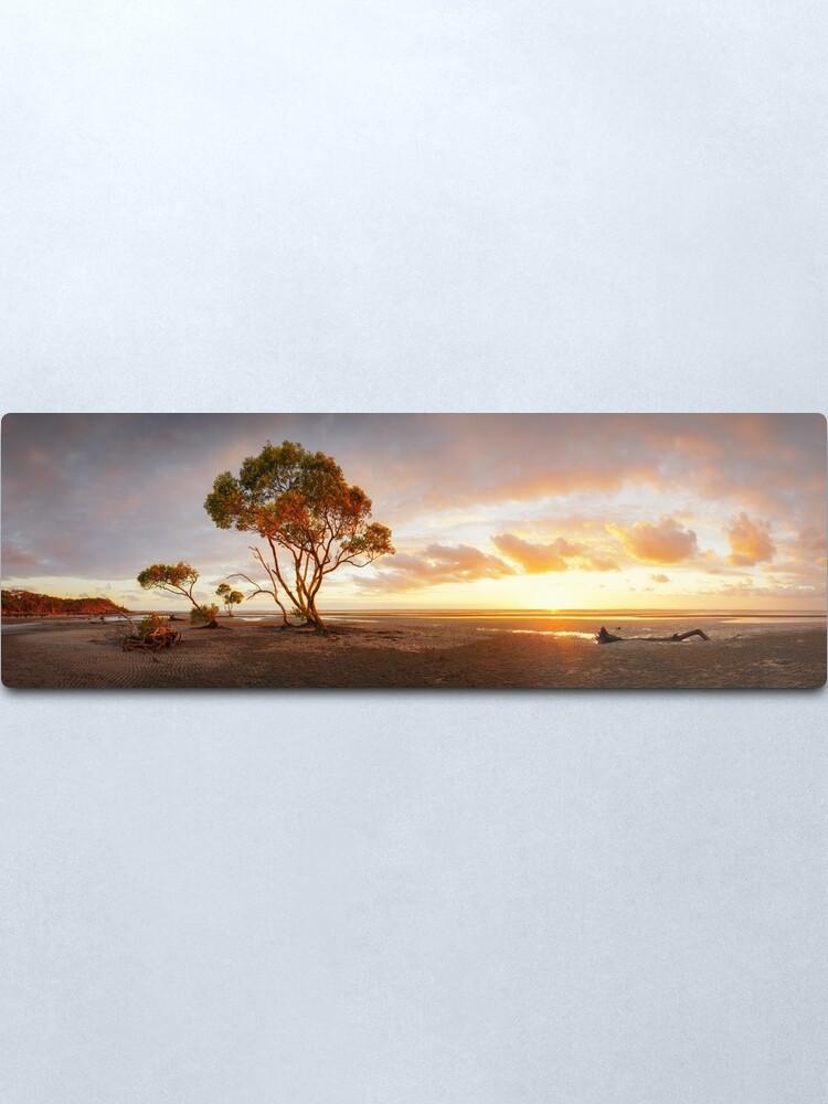 Alternate view of Mangrove Trees, Moreton Bay, Queensland, Australia Metal Print