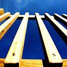 Barrier Blues by Adam Jones